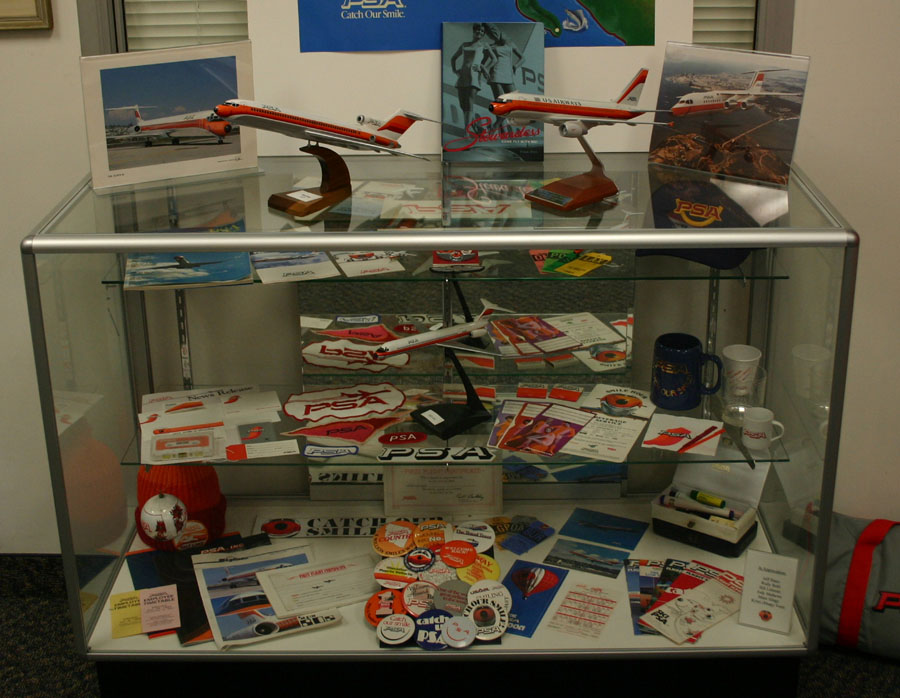 Flight path display case